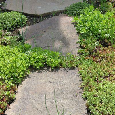 Polygonplatten als Schrittplatten